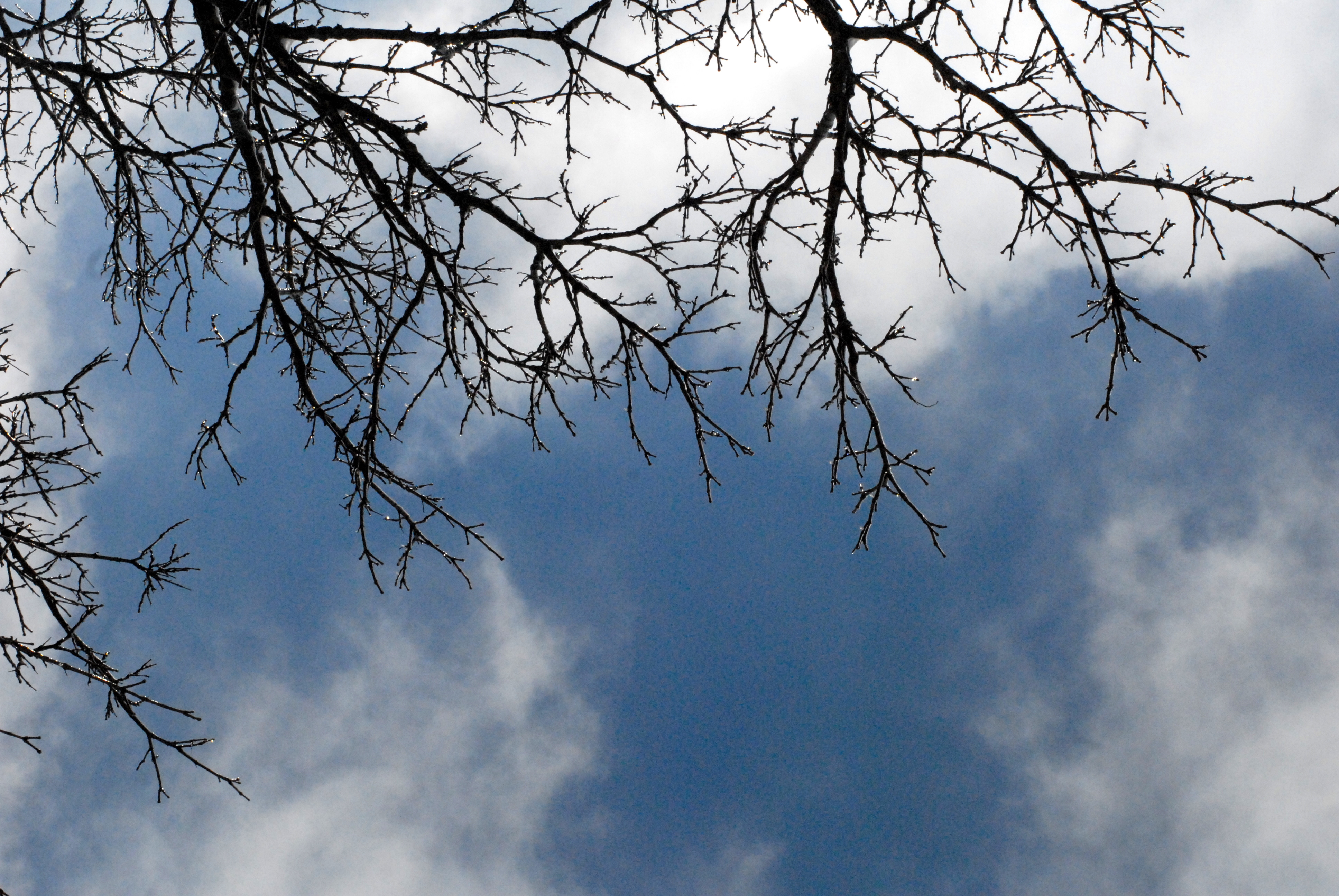 I Looked Up and The Sky Was Blue: What I Want vs. What INeed