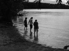 Picnic Point, 2011 041